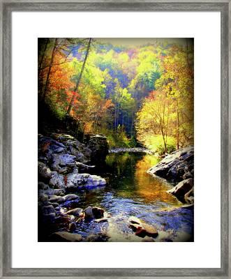Upstream Framed Print by Karen Wiles