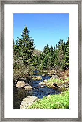 Upstream Framed Print by Will Boutin Photos