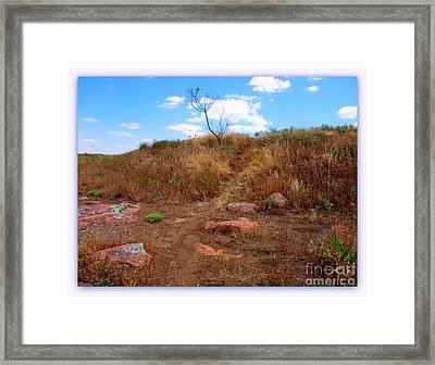 Upward Trail Framed Print by Mickey Harkins
