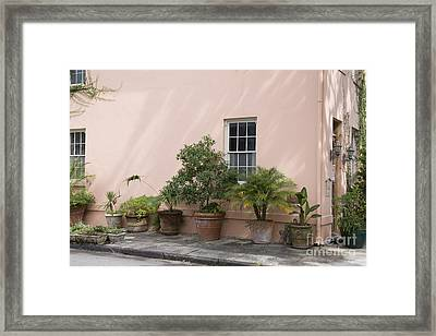 Urban Container Garden Framed Print