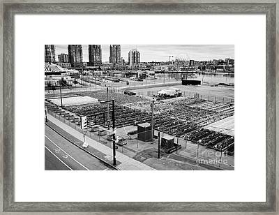 urban farm on unused lot at concord pacific place at false creek Vancouver BC Canada Framed Print by Joe Fox