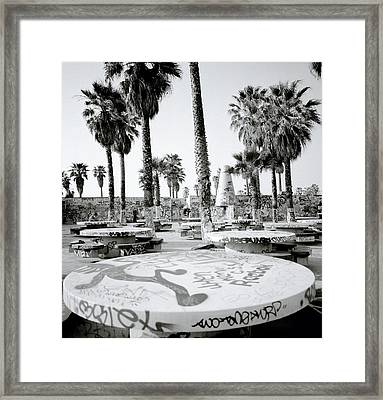 Urban Graffiti  Framed Print