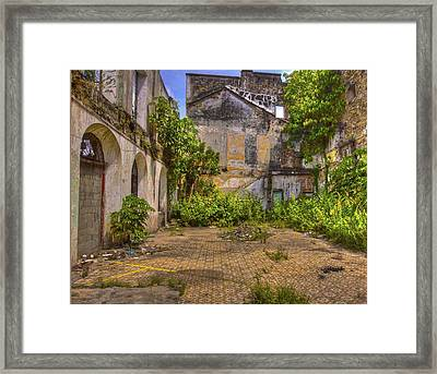 Urban Jungle Framed Print by Kandy Hurley