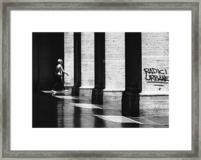 Urban Roots Framed Print by A Rey