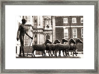 Urban Shepherd 2 Framed Print by Joanna Madloch