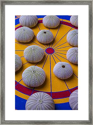 Urchins On Game Board Framed Print by Garry Gay