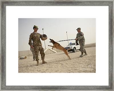 U.s. Air Force Soldier Takes A Bite Framed Print by Stocktrek Images
