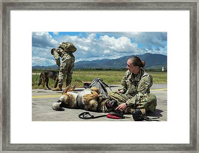 U.s. Army Specialist And Her Military Framed Print by Stocktrek Images