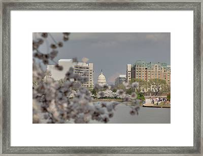 Us Capitol - Cherry Blossoms - Washington Dc - 01138 Framed Print by DC Photographer