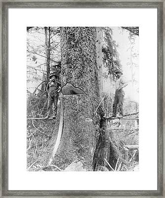 Us Forestry Framed Print