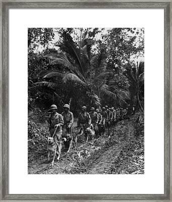 U.s. Marine Raiders And Their Dogs Framed Print