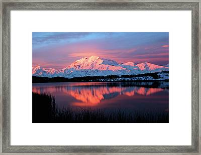 Usa, Alaska, Denali National Park Framed Print by Hugh Rose