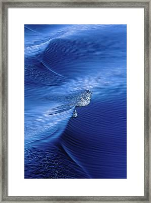 Usa, Alaska, Inside Passage, Pattern Framed Print