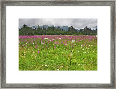 Usa, Alaska, Kenai Peninsula, Seward Framed Print