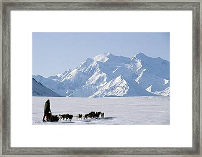 Usa, Alaska, Sled Dogs, Park Ranger Framed Print by Gerry Reynolds