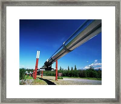 Usa, Alaska, Trans Alaska Crude Oil Framed Print by Adam Jones
