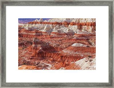 Usa, Arizona A Desert Area Called Toad Framed Print by Jaynes Gallery