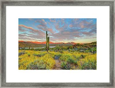 Usa, Arizona, Lake Bartlett, Cave Creek Framed Print by Jaynes Gallery