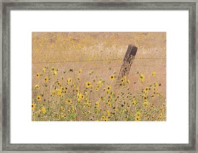 Usa, California, Adin Framed Print by Jaynes Gallery