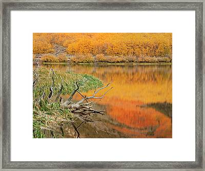 Usa, California Autumn Colors Reflect Framed Print by Jaynes Gallery