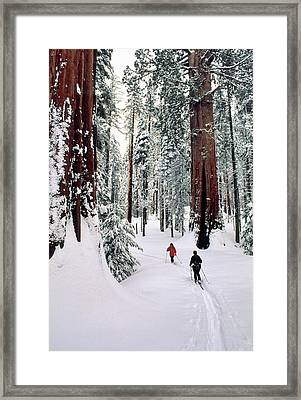 Usa, California, Cross Country Skiing Framed Print by Gerry Reynolds
