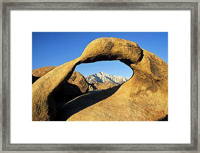 Usa, California, Eastern Sierra, Lone Framed Print