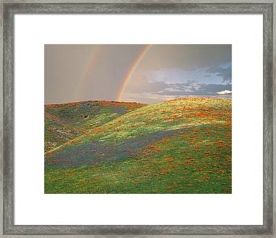 Usa, California, Near Gorman Framed Print