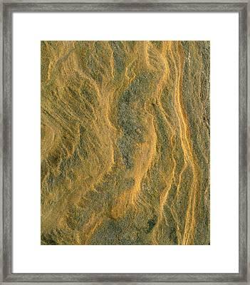 Usa, California, San Diego, Patterns Framed Print by Jaynes Gallery