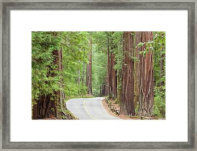 Usa, California View Of Road Framed Print by Jaynes Gallery