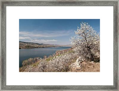 Usa, Co, Larimer Co, Fort Collins Framed Print by Trish Drury
