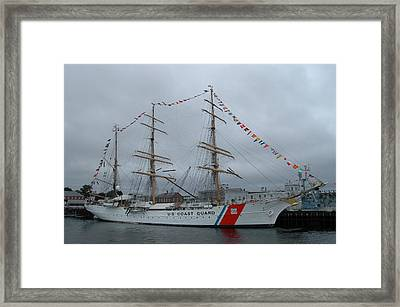 Usa Coast Guard Framed Print