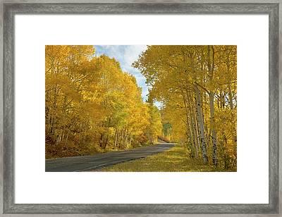 Usa, Colorado, Black Canyon Framed Print by Jaynes Gallery