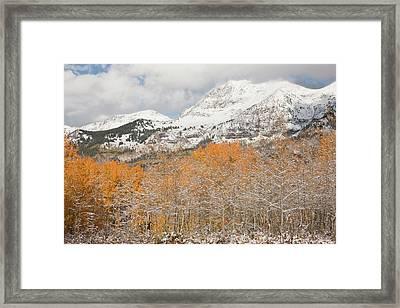 Usa, Colorado, Gunnison National Framed Print by Jaynes Gallery
