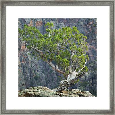 Usa, Colorado, Gunnison National Park Framed Print