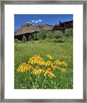 Usa, Colorado, Mill Creek Valley Framed Print