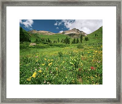Usa, Colorado, Mt Sneffels Wilderness Framed Print by Adam Jones