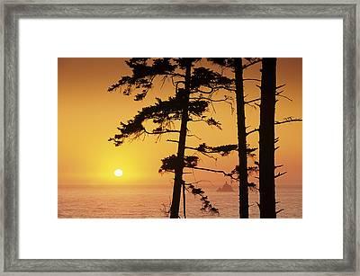 Usa, Ecola State Park Oregon, Tillamook Framed Print by Greg Vaughn