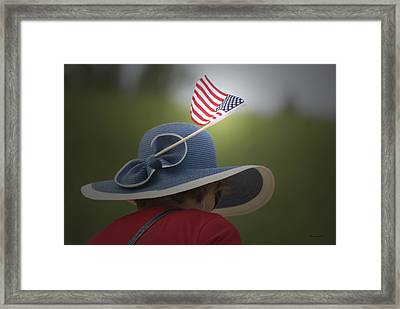Usa Flags 04 Framed Print by Thomas Woolworth