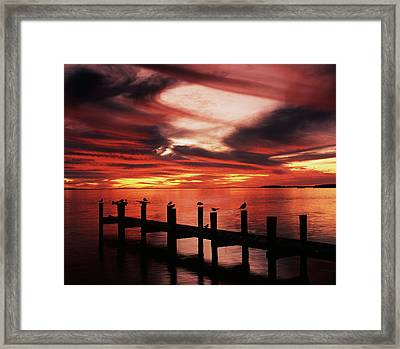 Usa, Florida, Fort Meyers, Silhouetted Framed Print