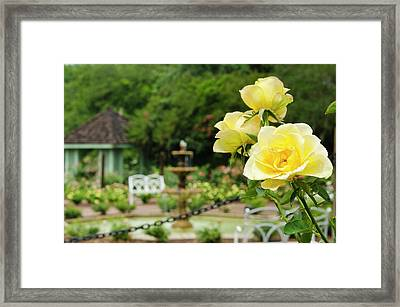 Usa, Florida Harry P Leu Gardens Framed Print by Michael Defreitas