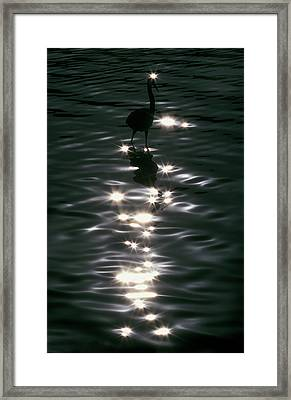 Usa, Florida, Placido Framed Print by Jaynes Gallery