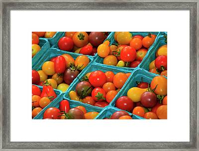 Usa, Georgia, Savannah, Cherry Tomatoes Framed Print