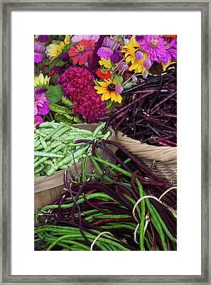 Usa, Georgia, Savannah, Flowers Framed Print