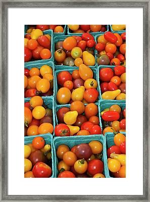 Usa, Georgia, Savannah, Organic Cherry Framed Print by Joanne Wells