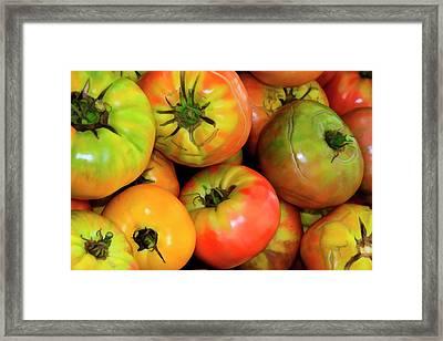 Usa, Georgia, Savannah, Organic Framed Print by Joanne Wells