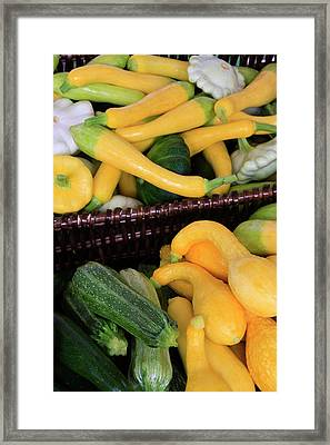Usa, Georgia, Savannah, Organic Squash Framed Print