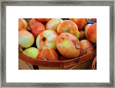 Usa, Georgia, Savannah, Sweet Onions Framed Print by Joanne Wells