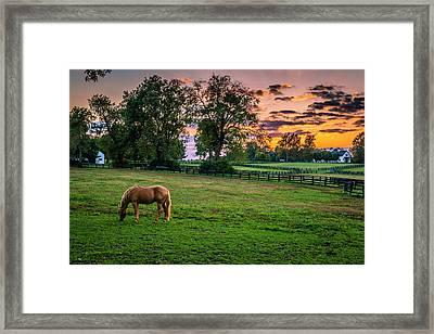 Usa, Lexington, Kentucky Framed Print by Rona Schwarz