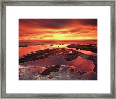 Usa, Maine, Acadia National Park Framed Print by Christopher Talbot Frank