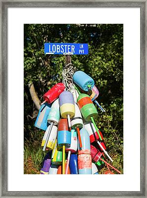 Usa, Maine, Owls Head, Sign For Lobster Framed Print